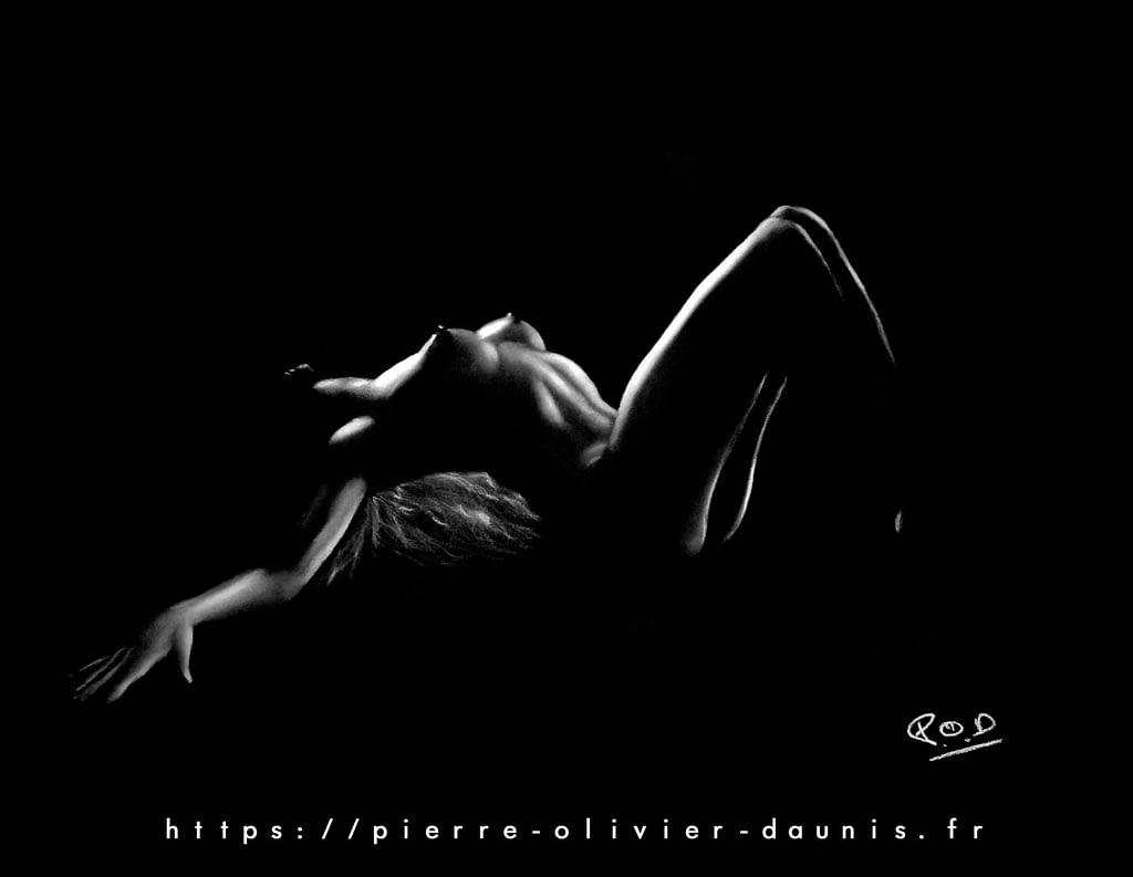 nu artistique tableau de Silhouette de femme