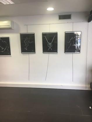 expo Daunis