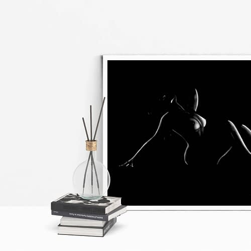 tableau moderne femme nue 21 au pastel sec