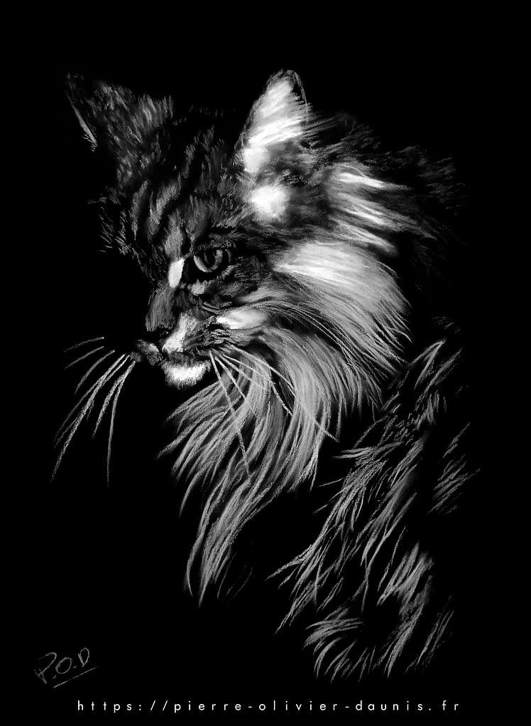 tableau moderne de chat 3 au pastel sec
