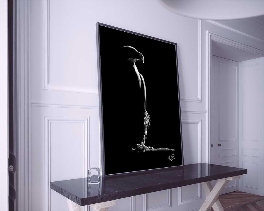 Peinture moderne d'aigle au pastel sec