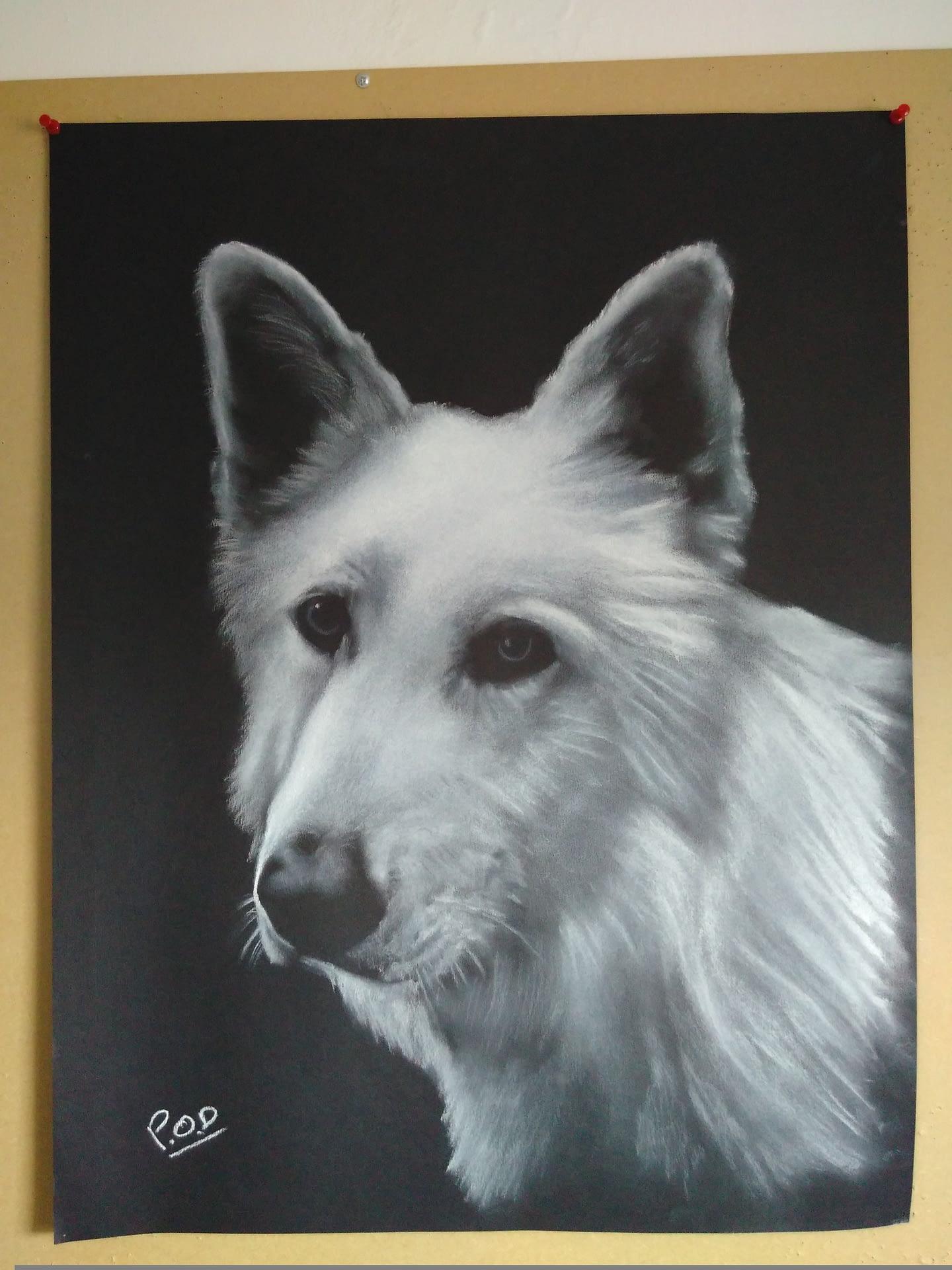Votre projet tableau de chien au pastel